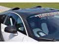Bugatti Veyron 16.4 Mansory Linea Vivere Pearl Metallic photo #42