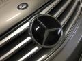 Mercedes-Benz SL 65 AMG Roadster Pewter Metallic photo #61