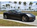 Ferrari California  Grigio Silverstone (Dark Gray Metallic) photo #14