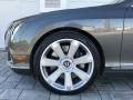 Bentley Continental GT  Granite photo #26