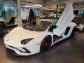 Lamborghini Aventador S Bianco Isis photo #4