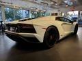 Lamborghini Aventador S Bianco Isis photo #7